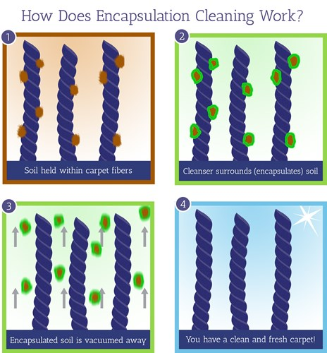 How Low Moisture Cleaning Works